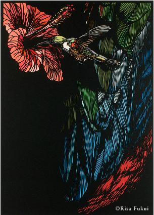 バハマハチドリ:2007年