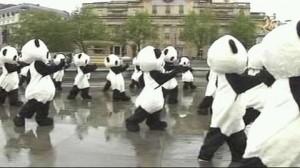 100匹以上のパンダが行進
