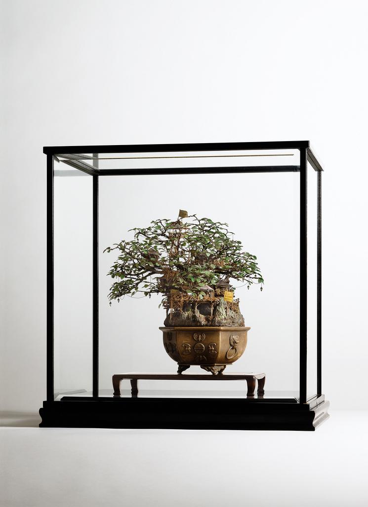 相羽高徳氏(TAKANORI AIBA)によるミニチュア盆栽ツリーハウス3