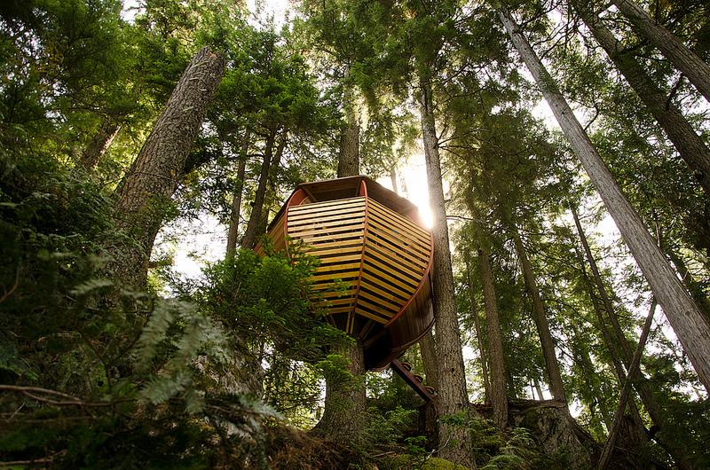 カナダウィスラーにある秘密のツリーハウス「The HemLoft」5