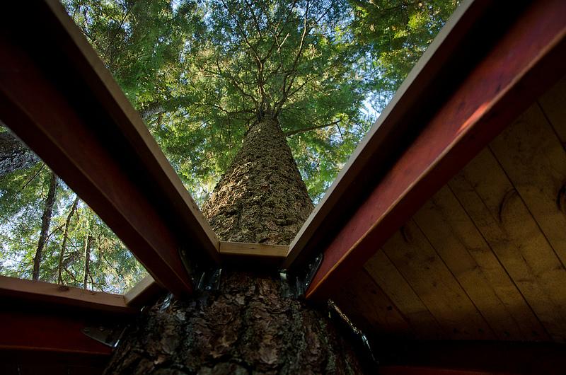 カナダウィスラーにある秘密のツリーハウス「The HemLoft」19