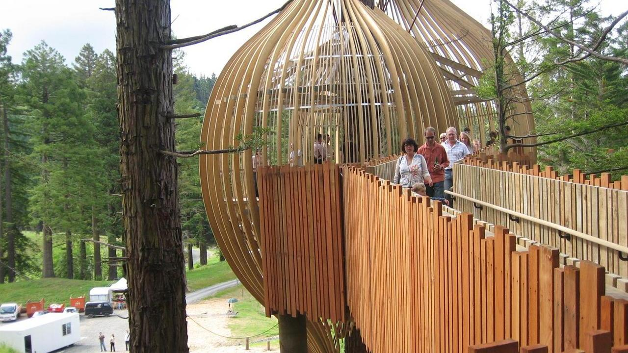 The Redwoods Treehouse9