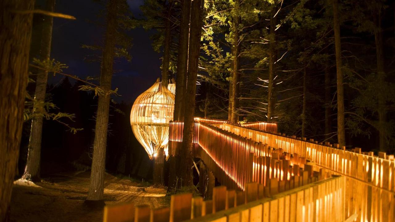 イエロー・ツリーハウス・レストラン(Yellow Treehouse Restaurant)12