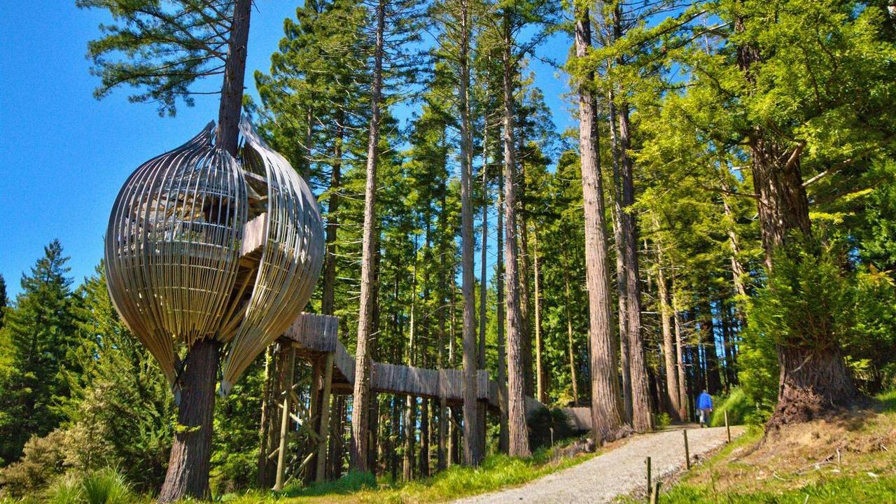 The Redwoods Treehouse5