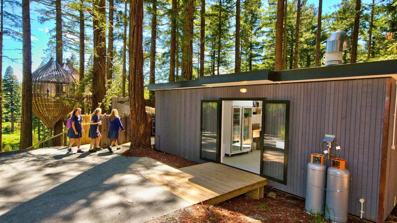 The Redwoods Treehouse1