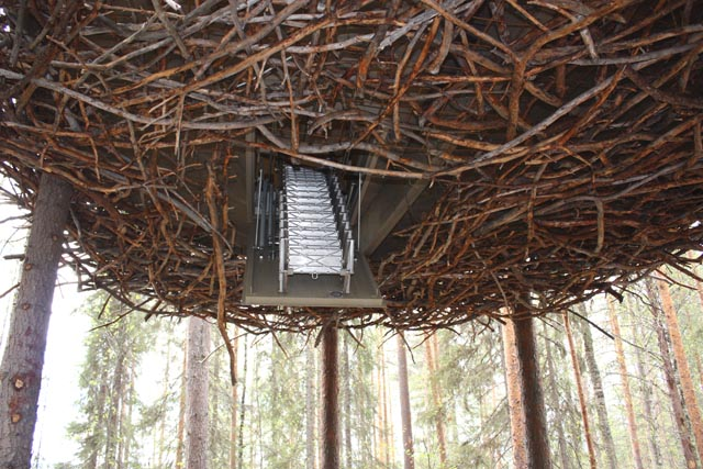 treehotel-the-birds-nest 鳥の巣のようなツリーホテル12