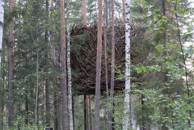 treehotel-the-birds-nest 鳥の巣のようなツリーホテル3