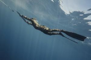 水の中のウェイクボード、サブウィング(Subwing)2
