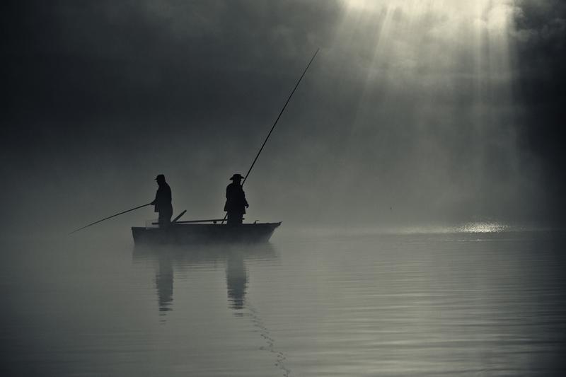 この世のものとは思えない美しい霧がたちこめる自然風景写真13