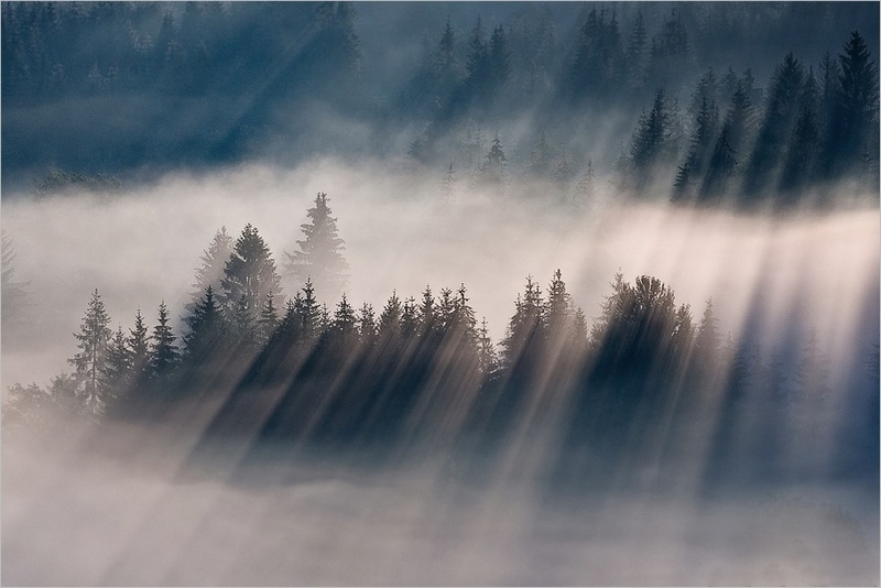 この世のものとは思えない美しい霧がたちこめる自然風景写真15