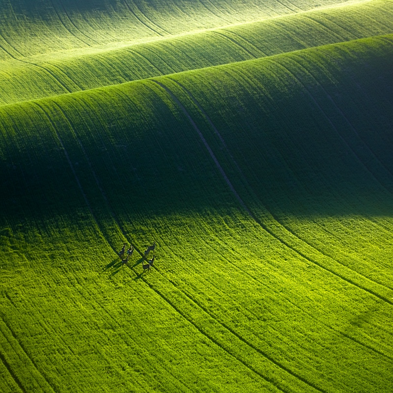 ファンタジーの世界のような自然風景写真21