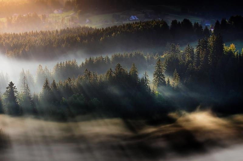この世のものとは思えない美しい霧がたちこめる自然風景写真3