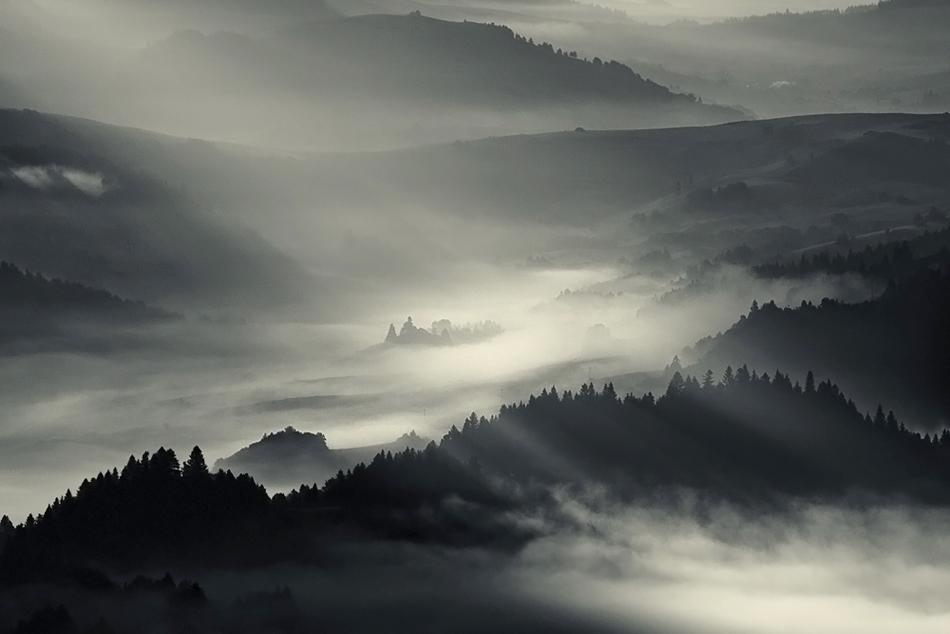 この世のものとは思えない美しい霧がたちこめる自然風景写真1