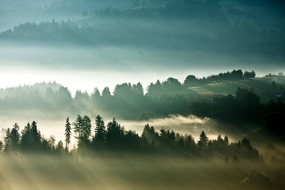 この世のものとは思えない美しい霧がたちこめる自然風景写真8