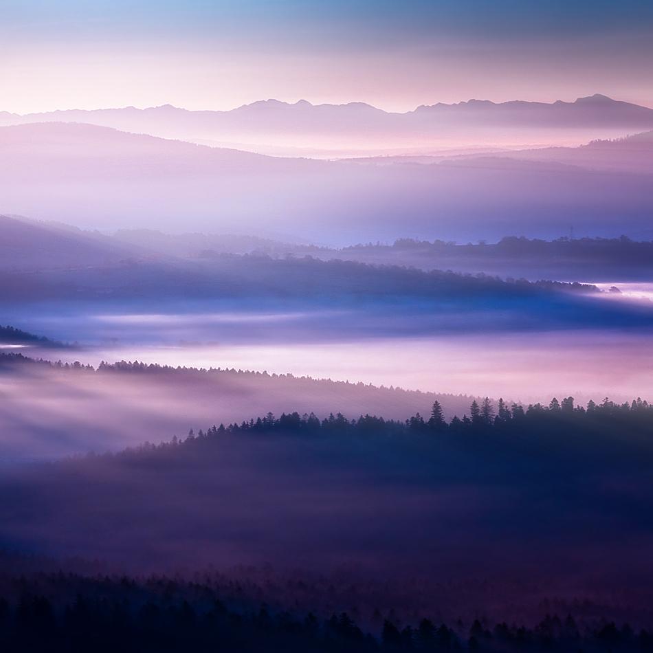 この世のものとは思えない美しい霧がたちこめる自然風景写真20