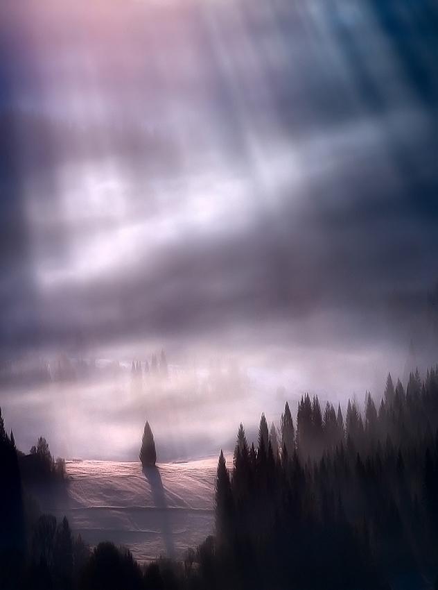 この世のものとは思えない美しい霧がたちこめる自然風景写真19