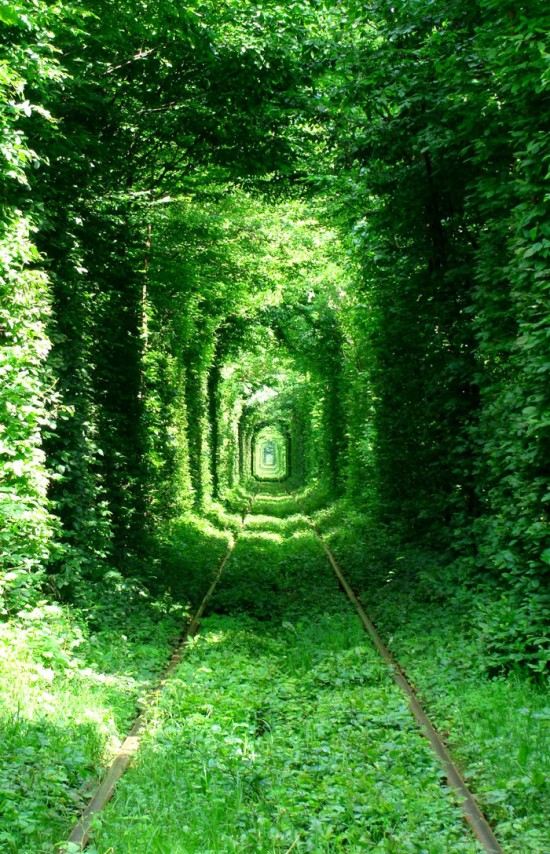 Tunnel of Love in Kleven, Ukraine6