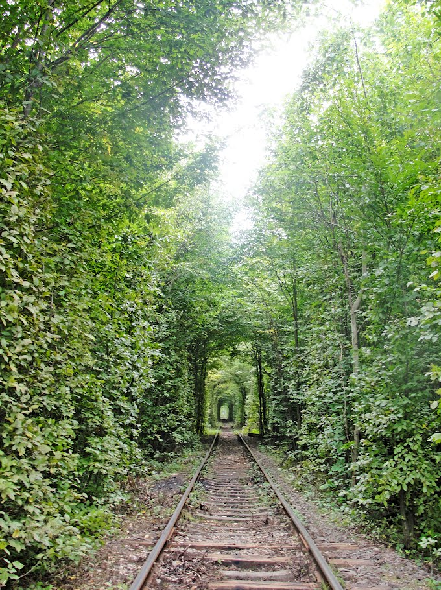 Tunnel of Love in Kleven, Ukraine20