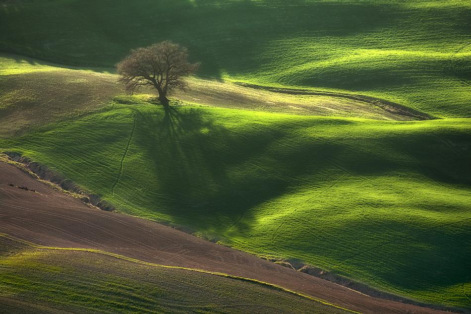 ファンタジーの世界のような自然風景写真23
