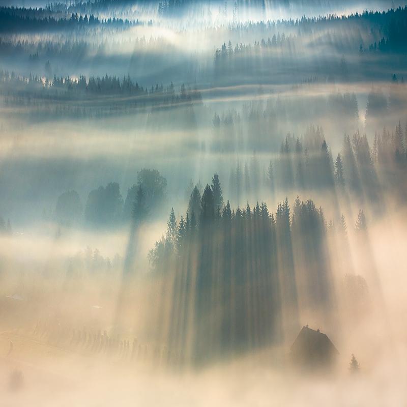 この世のものとは思えない美しい霧がたちこめる自然風景写真5