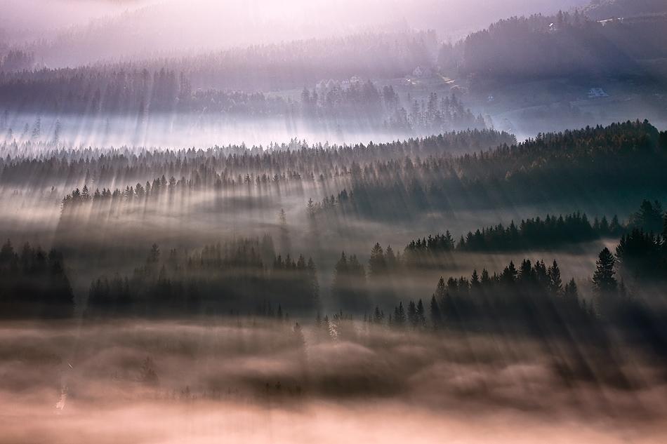 この世のものとは思えない美しい霧がたちこめる自然風景写真6