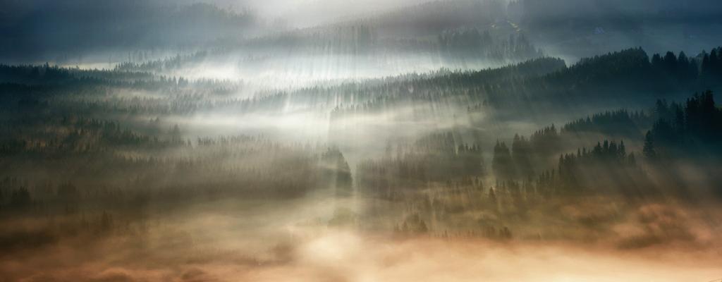 この世のものとは思えない美しい霧がたちこめる自然風景写真21