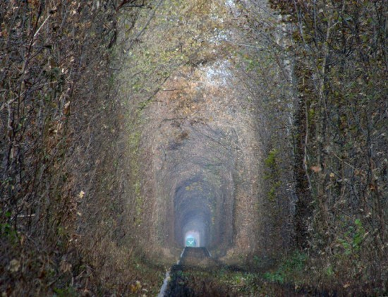 Tunnel of Love in Kleven, Ukraine24