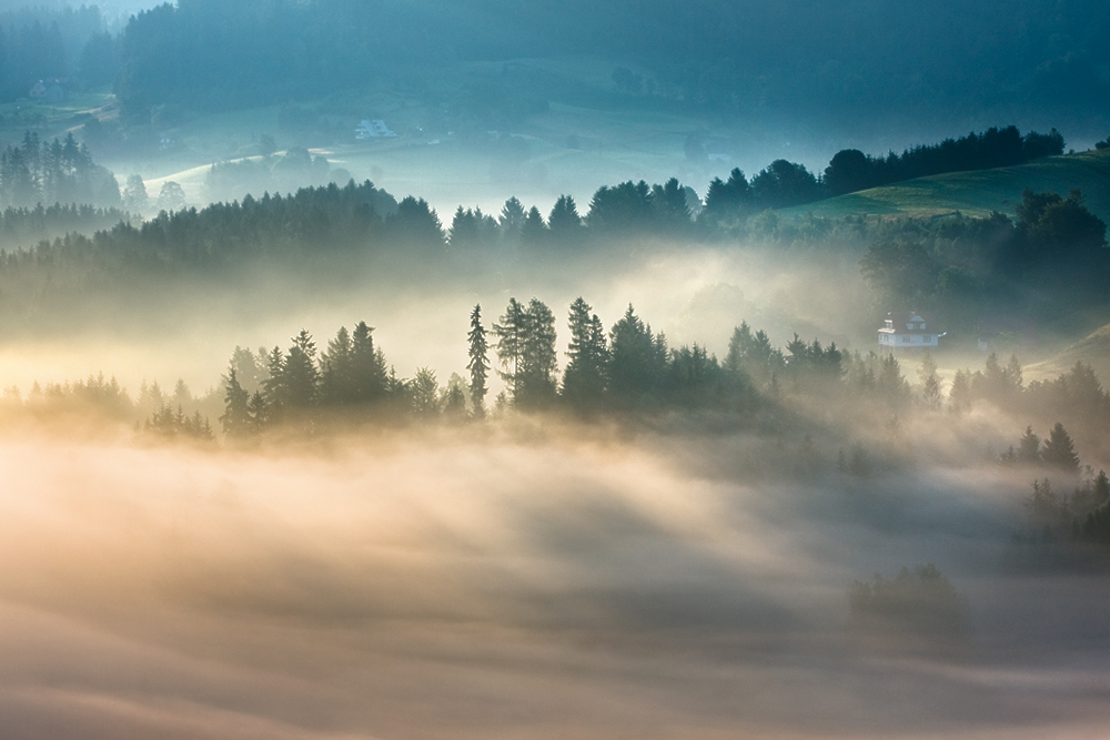 この世のものとは思えない美しい霧がたちこめる自然風景写真10