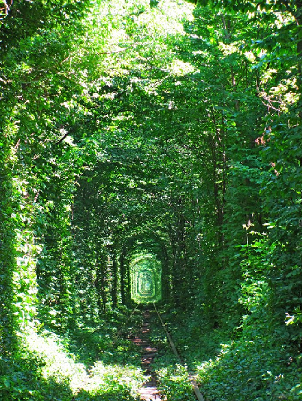 Tunnel of Love in Kleven, Ukraine12