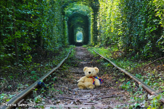 Tunnel of Love in Kleven, Ukraine21