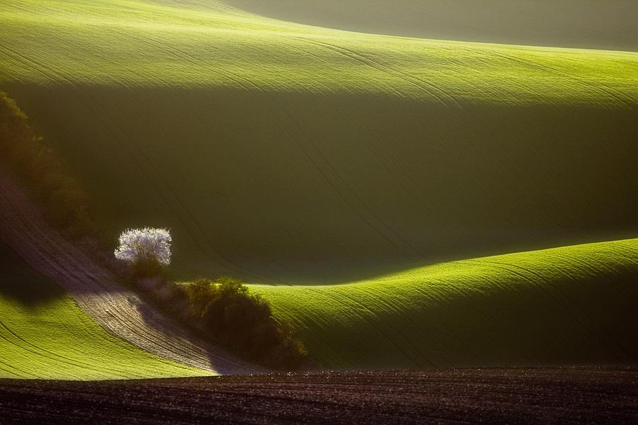 ファンタジーの世界のような自然風景写真22