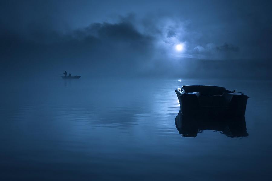 この世のものとは思えない美しい霧がたちこめる自然風景写真14