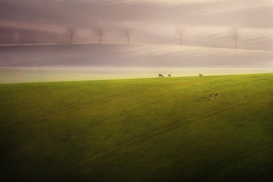 ファンタジーの世界のような自然風景写真24