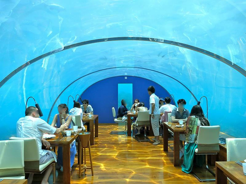 海中レストラン Ithaa Undersea14