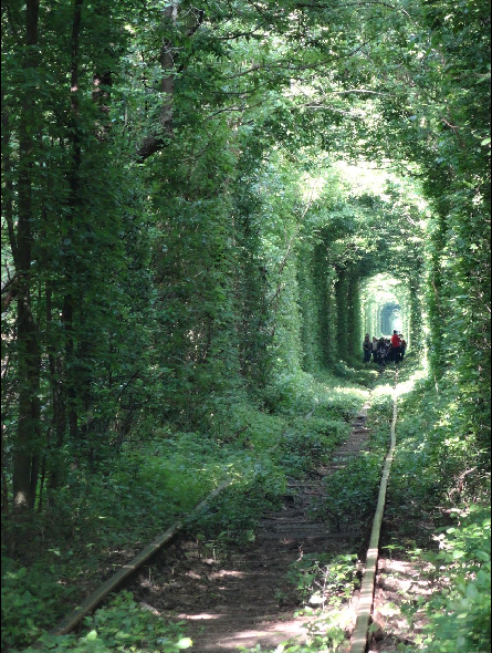 Tunnel of Love in Kleven, Ukraine19