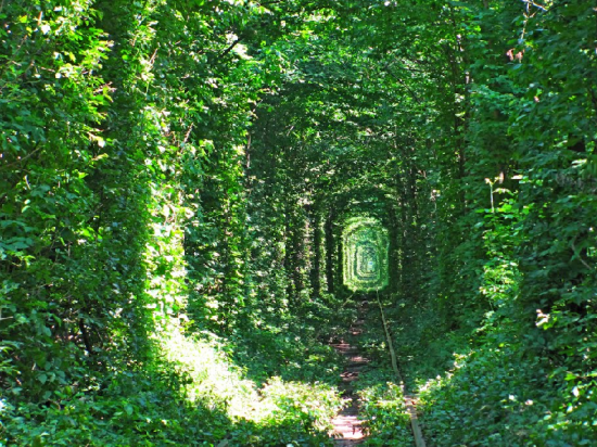 Tunnel of Love in Kleven, Ukraine2