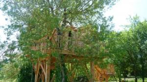 トムソーヤが住んでいそうなツリーハウス2