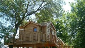 トムソーヤが住んでいそうなツリーハウス4