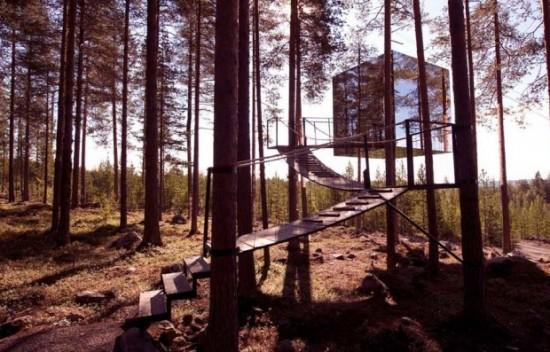 鏡のツリーハウス9