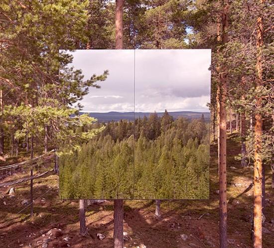 鏡のツリーハウス11