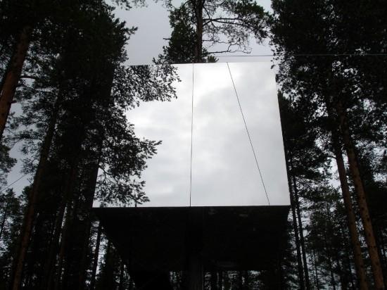 鏡のツリーハウス10