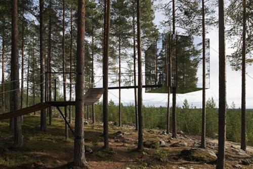 鏡のツリーハウス5