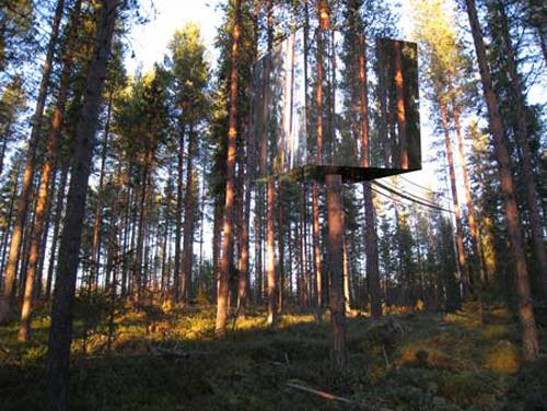 鏡のツリーハウス2