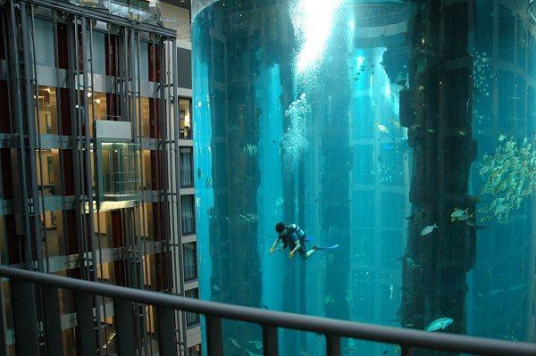 ホテル内の巨大なアクアリウム2