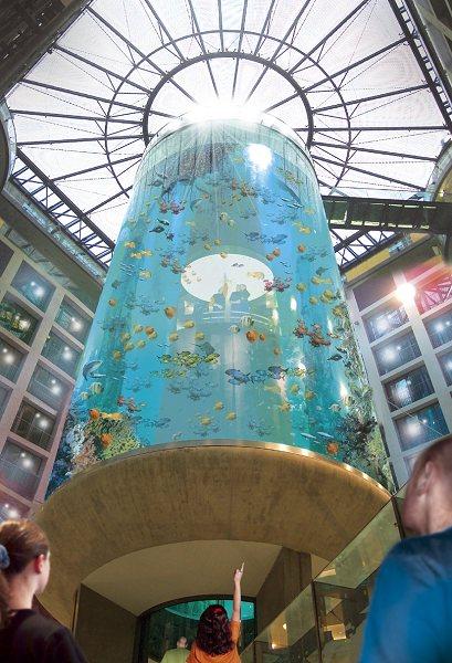 ホテル内の巨大なアクアリウム9