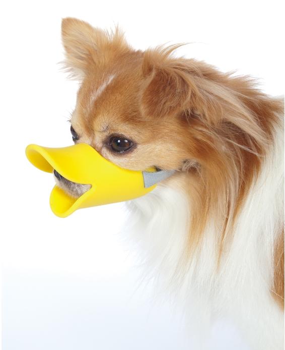 """口輪に見えない口輪""""quack(クァック)""""10"""