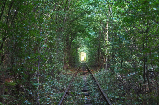 Tunnel of Love in Kleven, Ukraine18