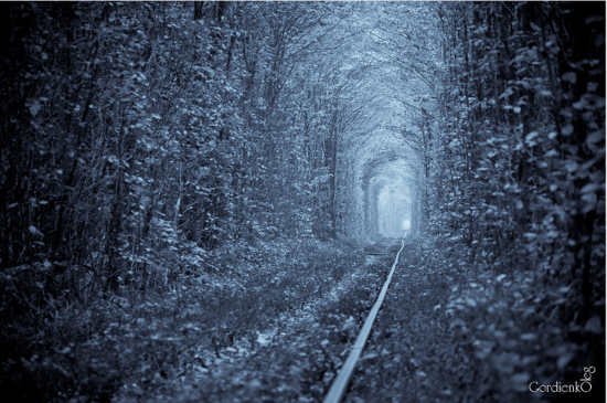 Tunnel of Love in Kleven, Ukraine27