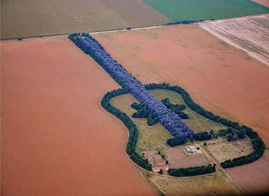 アルゼンチンにあるギターの形をした森林