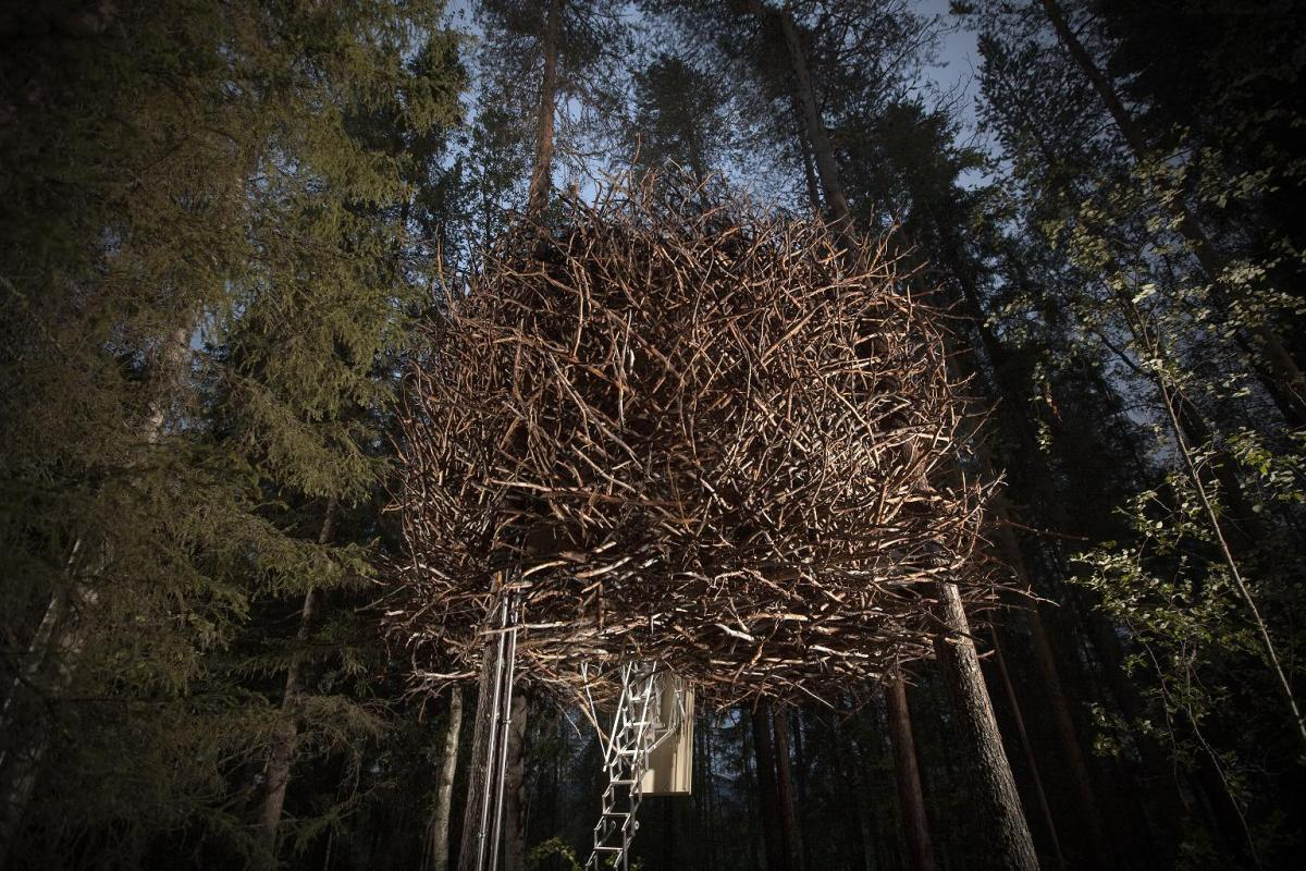 treehotel-the-birds-nest 鳥の巣のようなツリーホテル2